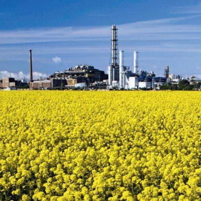 Biomass balance approach